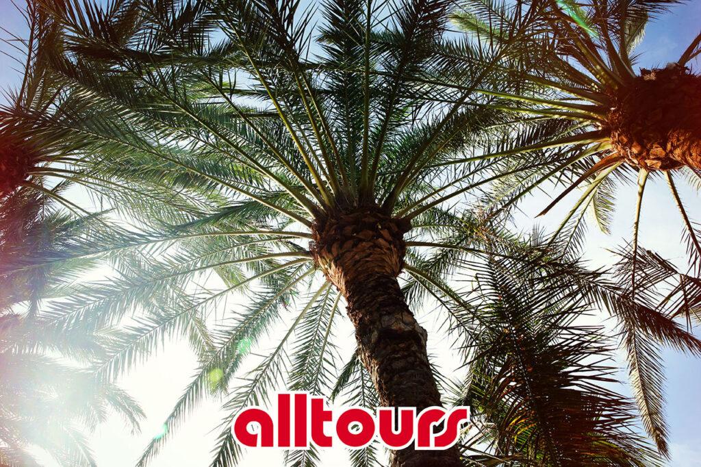 Alltours (© by Sven Görlich)
